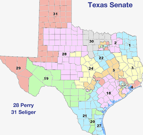 Texas Senate   District 17